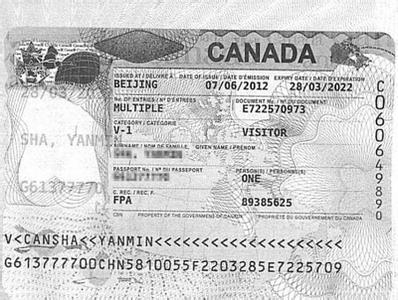 手把手教你加拿大探亲架构大签证数据详解pdf图片